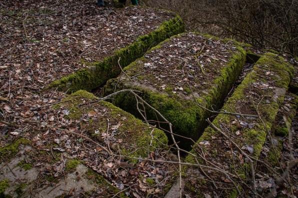Merkwürdige Ruine unter einem Baum