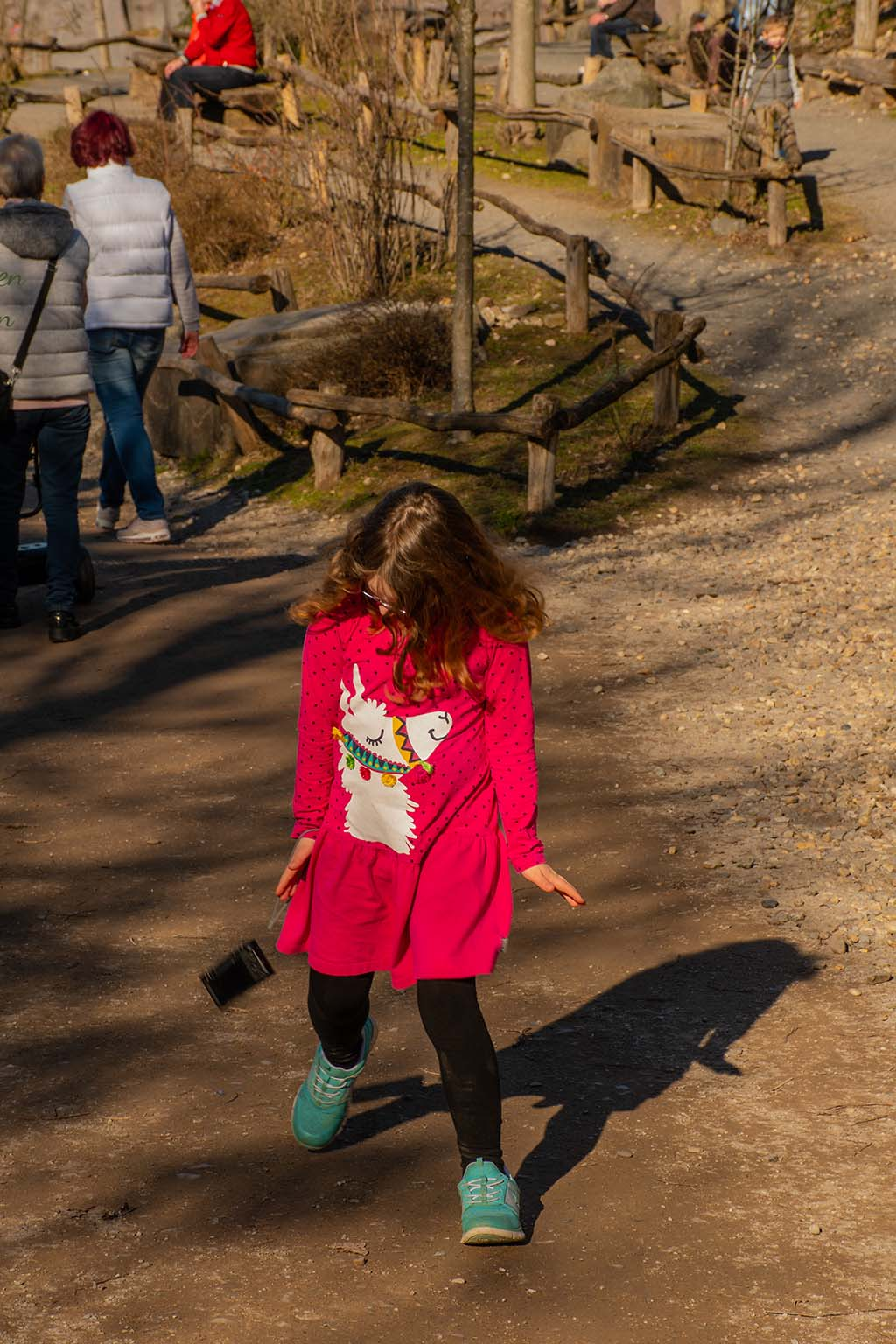 Pinguintanz - Zoom Erlebniswelt in Gelsenkirchen