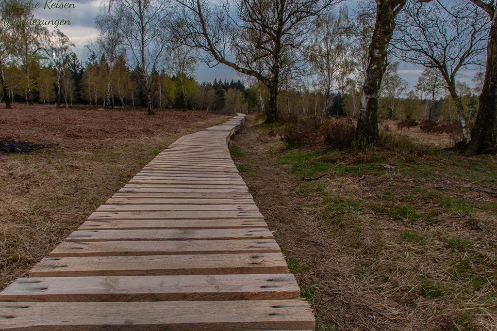 Bohlenweg durch das Naturschutzgebiet Struffelt