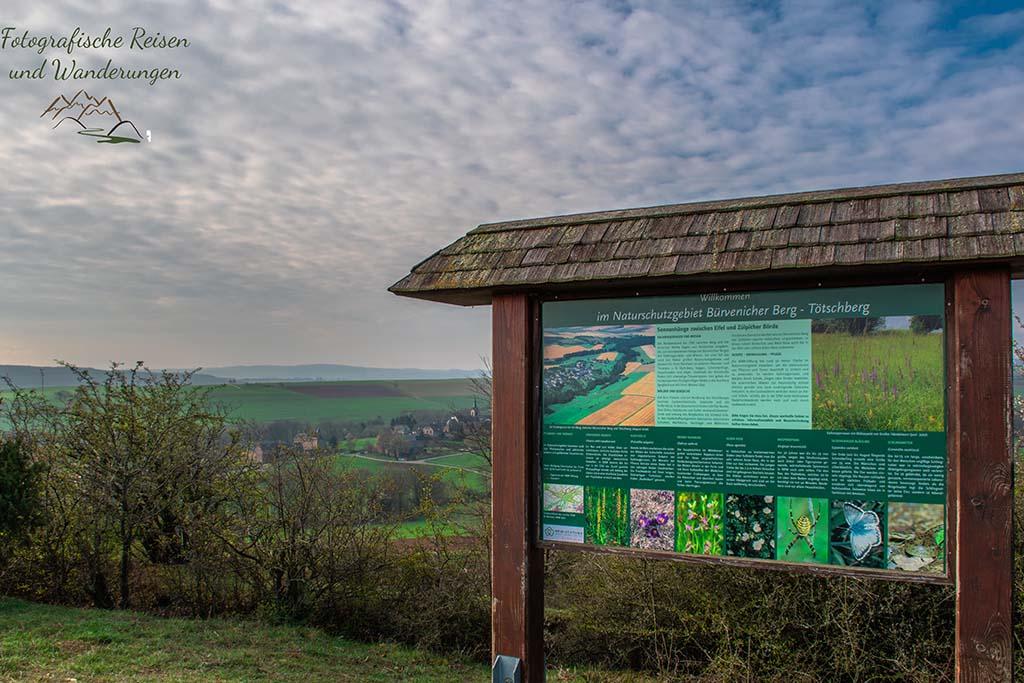 Naturschutzgebiet Bürvenicher Berg - Tötschberg