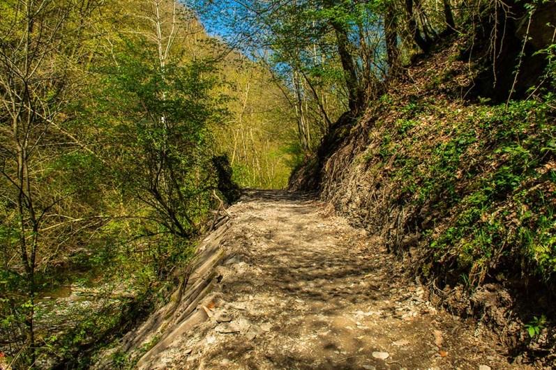 Mühlental der Wilden Endert (126)