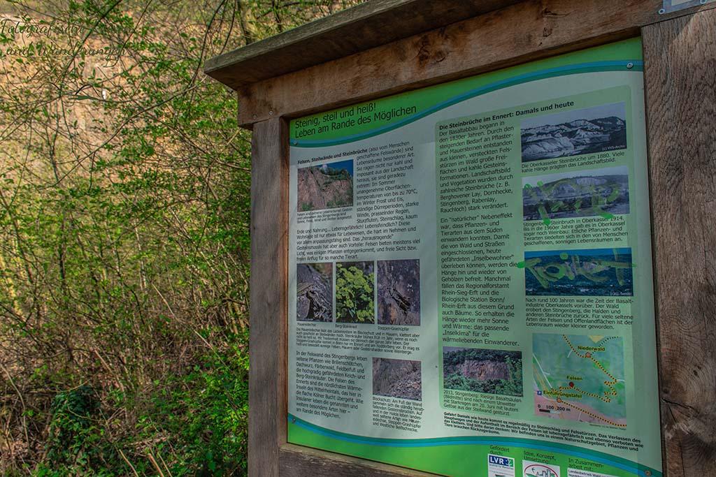 Überall gut lesbare Informationstafeln, hier zur Flora und Fauna - Felsen und Höhlen im Siebengebirge