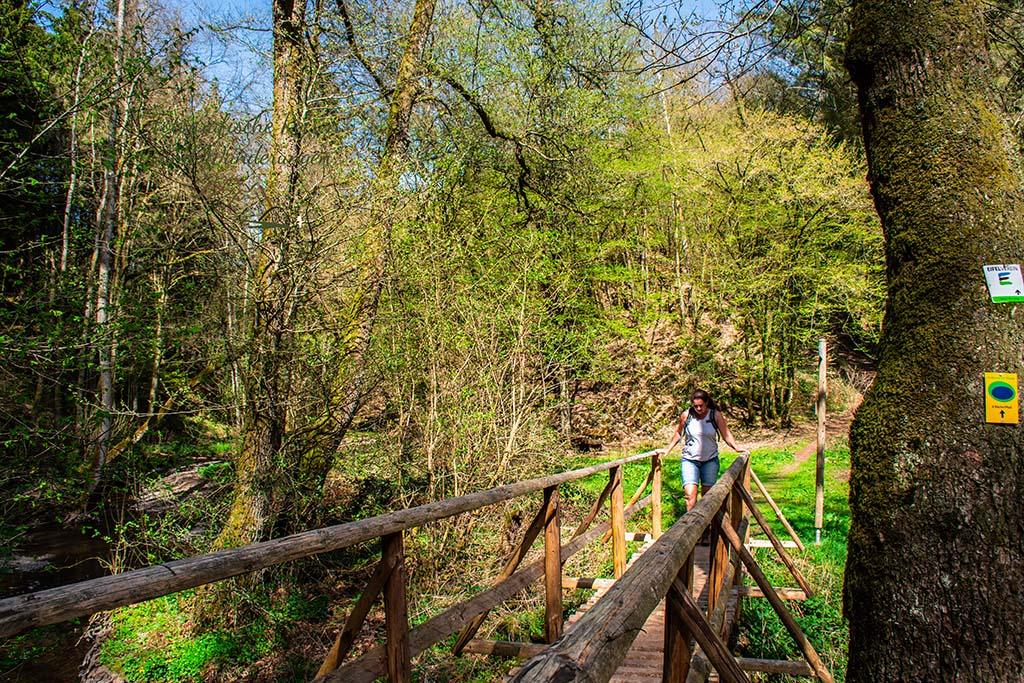 Brücke über den Sammetbach