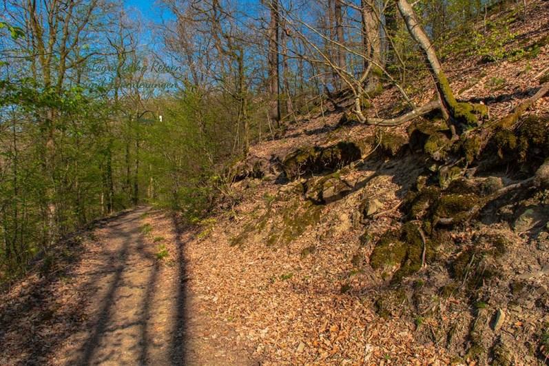 Es gibt sehr nette Wege auf dem Wildwiesenweg