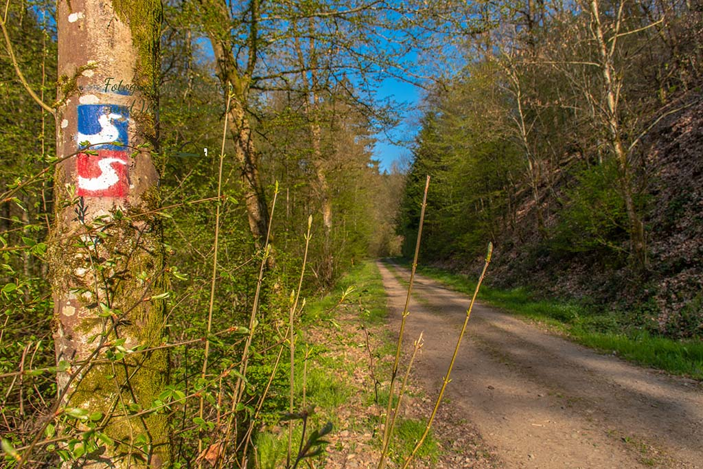 Wildwiesenweg