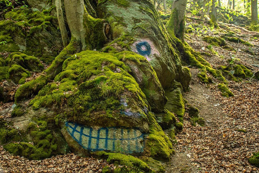 Die moosigen Steine mit einem Drachengesicht- Eifelsteig wandern