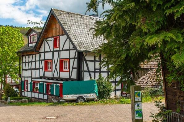 Eifelsteig_Gemünd-Steinfeld (119)