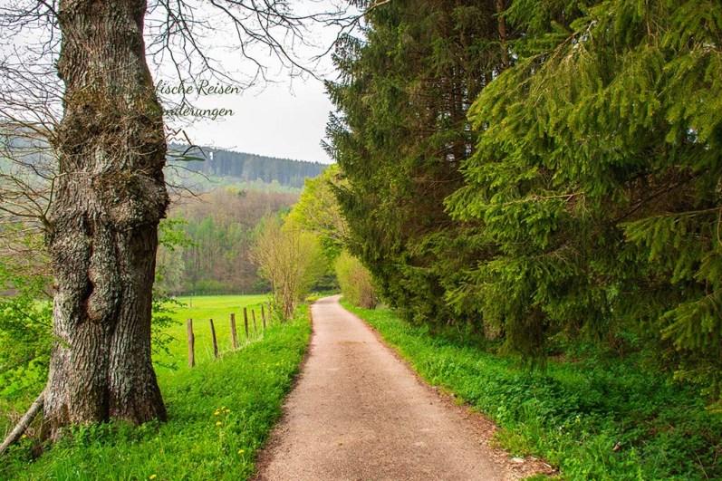 Ein herrlicher, flacher Wanderweg. Ausruhen für müde Beine