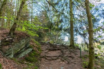 Felsige Wege, gesäumt von Moos bewachsenen Steinen