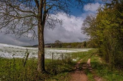 Winter im Mai auf dem Eifelsteig