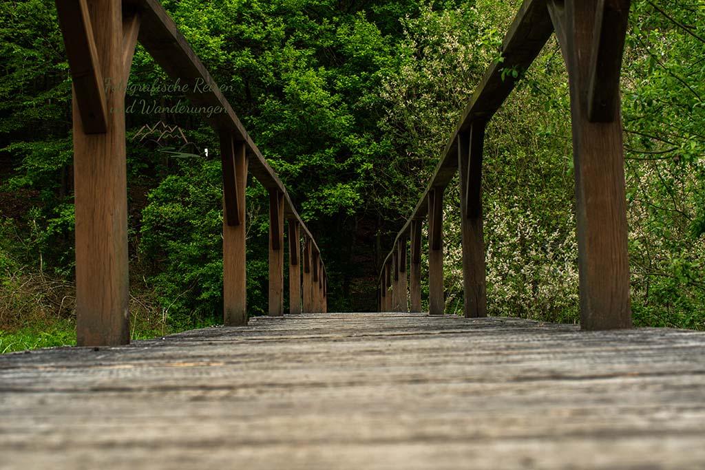 Brücke über ein Biotop - Ich habe mich zur Ameise herunter gebeugt, um ihr beim überqueren der Brücke behilflich zu sein. Als ich endlich unten war, war die Ameise verschwunden