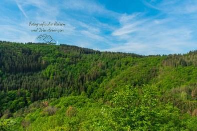Ausblick in das Vischeltal Abenteuer Wanderung im Sahrbachtal