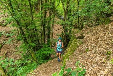 Waldweg und Conny