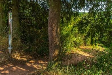 Eifelsteig Bruch - Himmerod