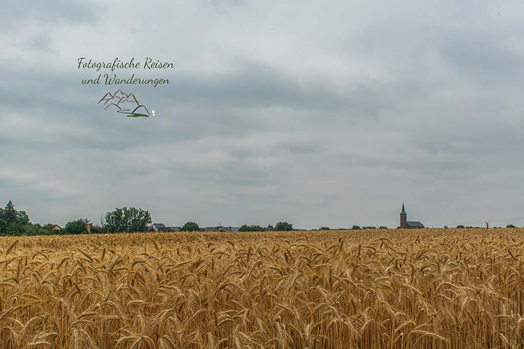 Kirche über Getreidefeld