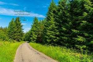 Teerweg: Zwischen Haus Ternell und Kutenhartvenn