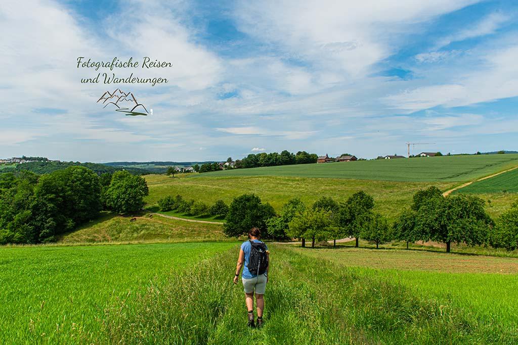 Blick auf Steinsberg