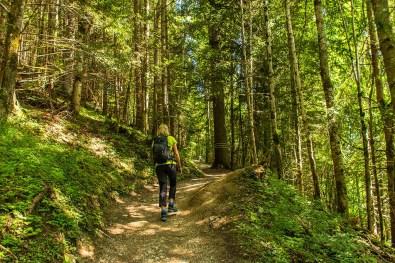Mit Katja im Wald