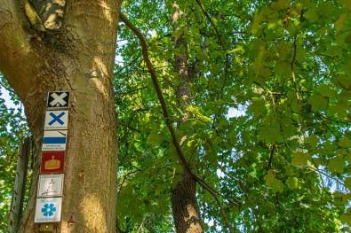 Wegezeichen auf dem Weg zum Kyffhäuser Denkmal