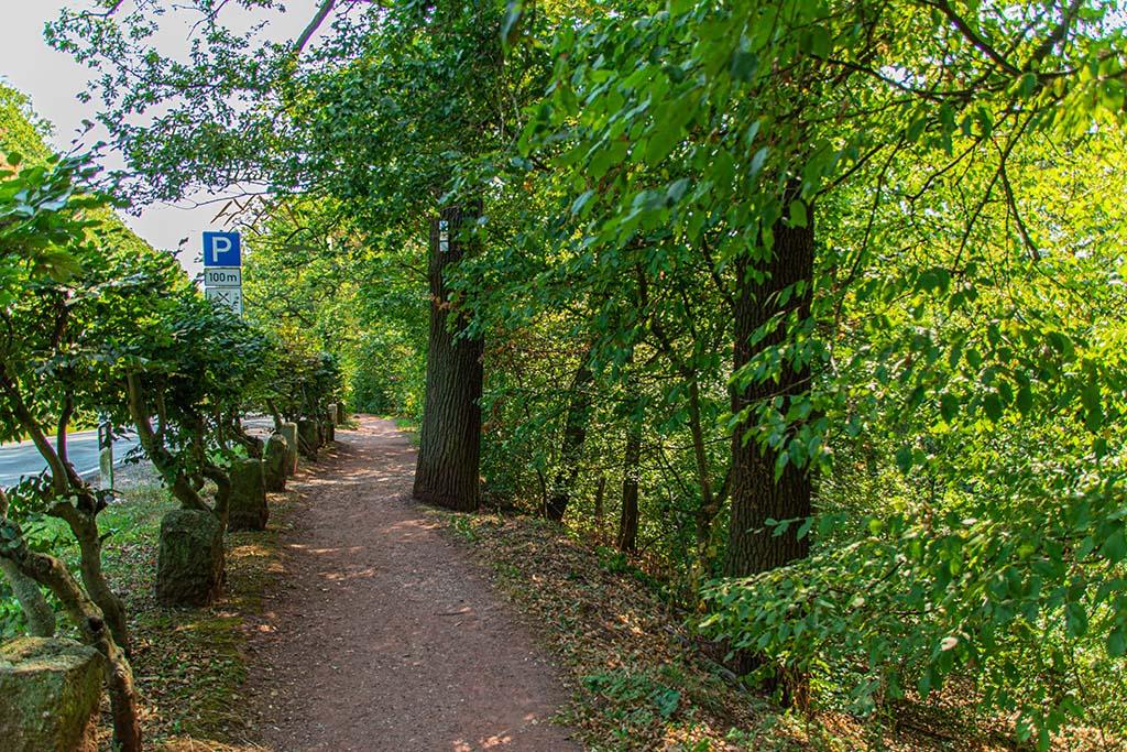Der Weg zum Kyffhäuser Denkmal