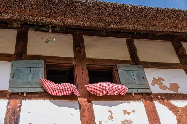 Federbetten im Fenster
