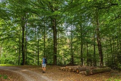 Naturpark Bergisches Land-Wandern