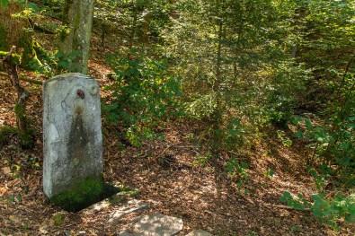 Wandern im Sauerland - Listertalsperrenweg