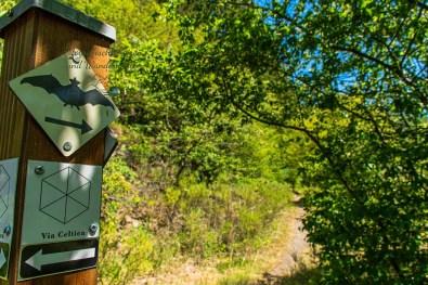 Wandern im Siegerland - Wittgensteiner Schieferpfad