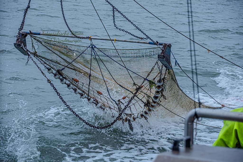 Drei Blogger auf dem Kutter - Fischgfangnetz