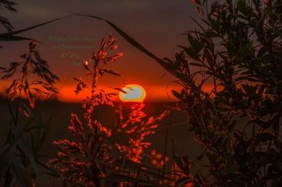 Sagenhafter Sonnenuntergang