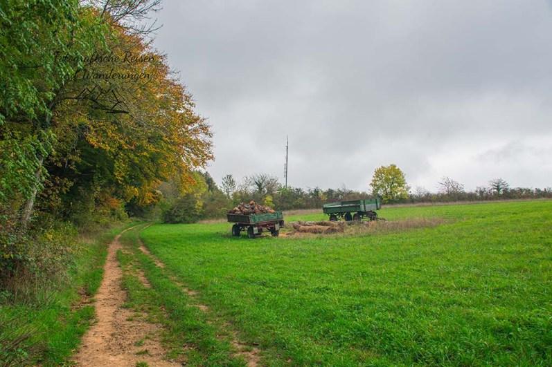 Panoramaweg Perl (74)