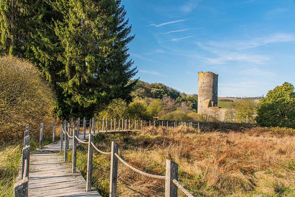 Steg über Quellmoore Baldenau