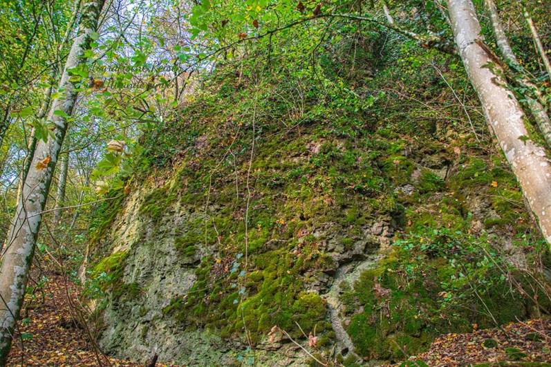 raumschleifchen Bardenbacher Fels