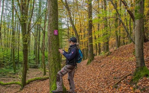 Wegepate Edi Klein - Traumschleife Steinhauerweg