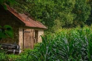 Das Haus am Feld