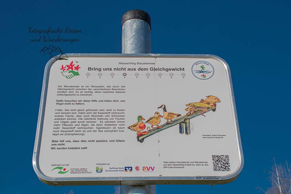 Fütterverbot für Wasservögel am Blausteinsee