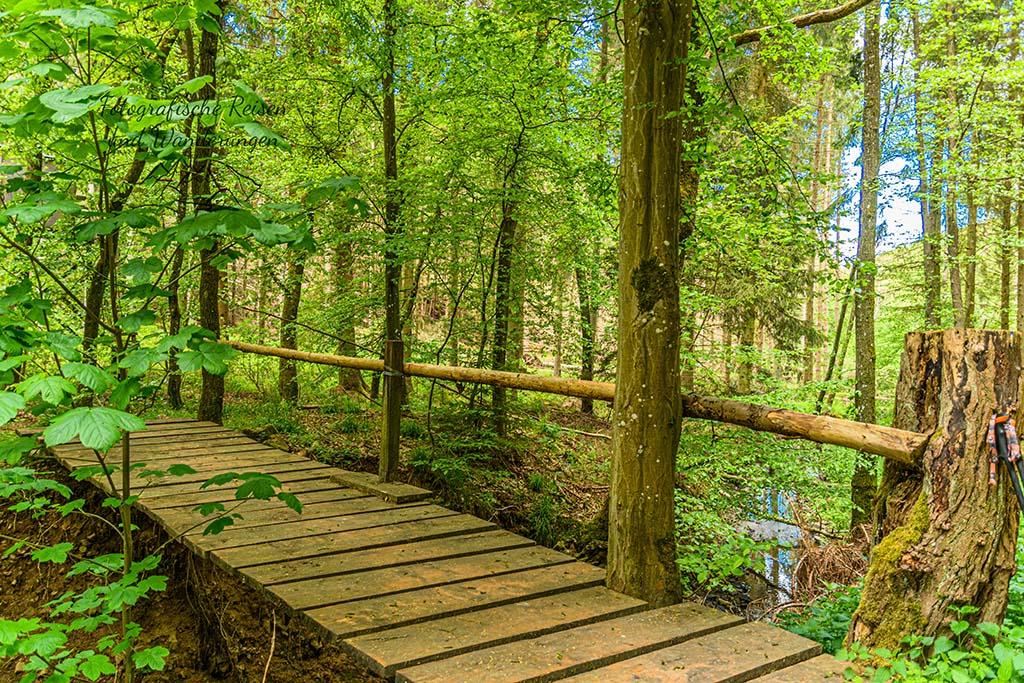 Michelsberg zum SChönauer Wald