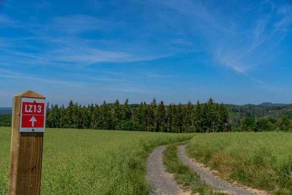 Holz und Feldweg