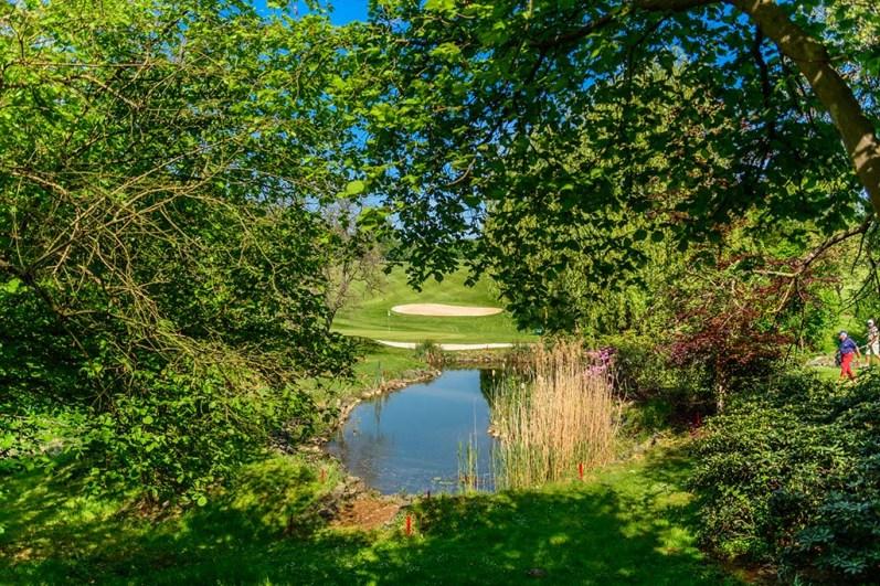 Golfplatz am Köhlerhof
