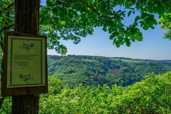 Aussichten in das Ehrbachtal