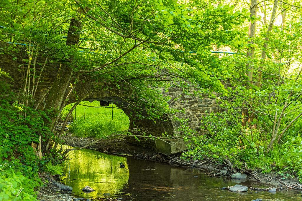 Die alte Steinbrücke vor der Ehrbachklamm