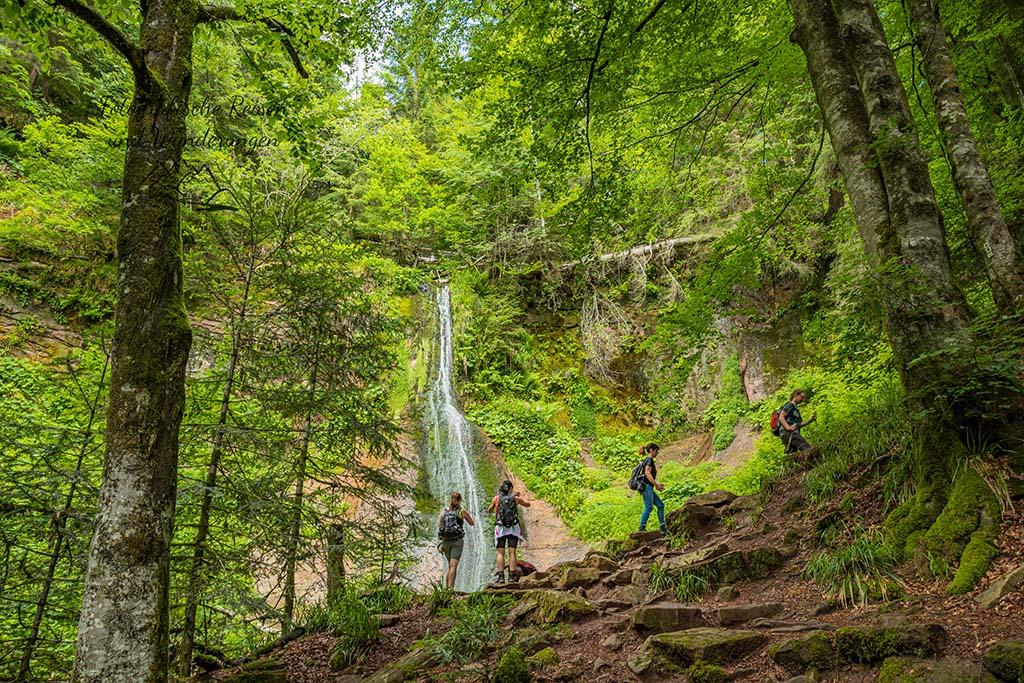 Hinauf zum Sankenbach Wasserfall