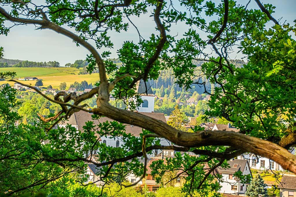 Blick durch die Bäume auf Kall und die Kirche
