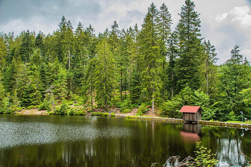 Hütte am Glaswaldsee