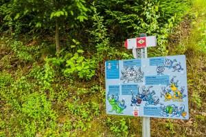 Das Panoramawegle - Schwarzwälder Wandersinfonie