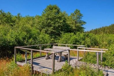 Aussichtsplattform im Dahlemer Moorpfad