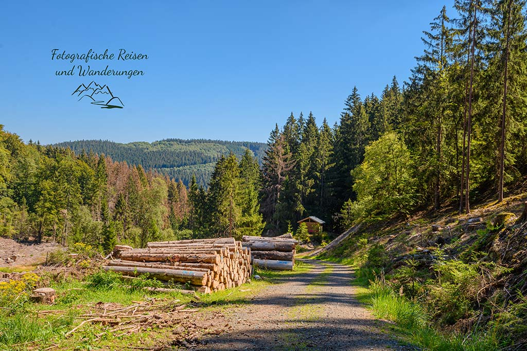 Blick zurück Richtung Trödelsteinhütte