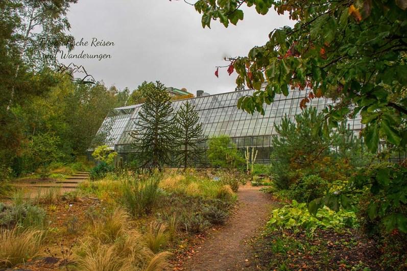 Schauhäuser im Botanischen Garten