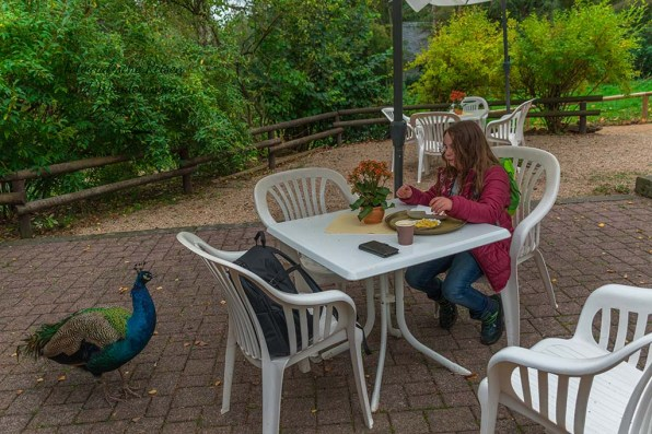 Pause im Eifel Zoo