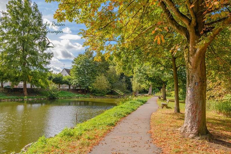 Ludwig-Rehbock Park
